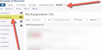 My work tab. In the left navigation panel, My Assignments button is highlighted.