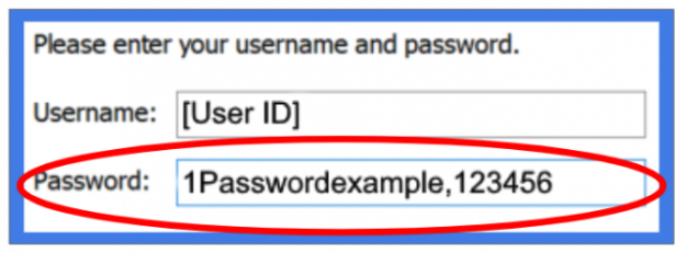 """Cisco AnyConnect login with sample password """"1Passwordexample,123456"""" highlighted."""