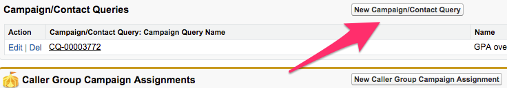 The New Campaign/Contact Query button
