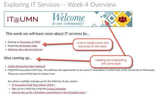 A page in Canvas showing an outline of what a students needs to do in week 4 of a course site