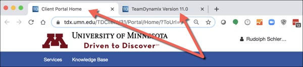 Browser window. Client portal home and TDNext tabs highlighted