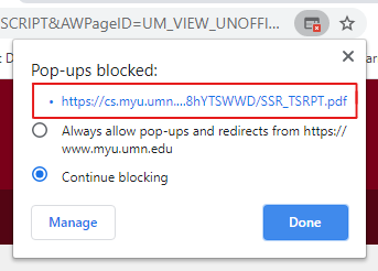 Pop-up blocked dialog box in Chrome. The URL for the blocked pop-up is highlighted. The Always allow pop-ups from this page radio button is selected.