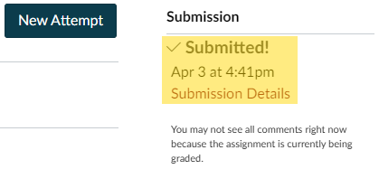assignment submission information including a link to Re-submit Assignment, the Submission date and time, and links to Submission Details and to View the Original Page