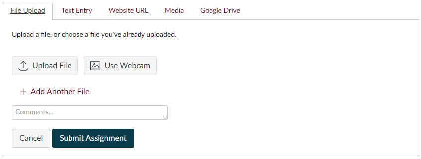 The assignment submission box with the File Upload option selected, and with Text Entry, Website URL, Media and Google Drive tabs also showing