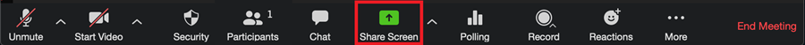 The Zoom toolbar with the Share Screen button highlighted